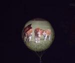 ballon-nuit-parthenaise.jpg