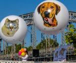 ballon-sphere-publicitaire-helium-SPA-Paris-7.jpg
